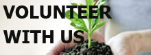 volunteer with the edgar cayce center