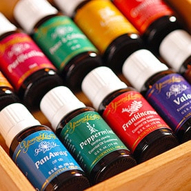 young living oils batch