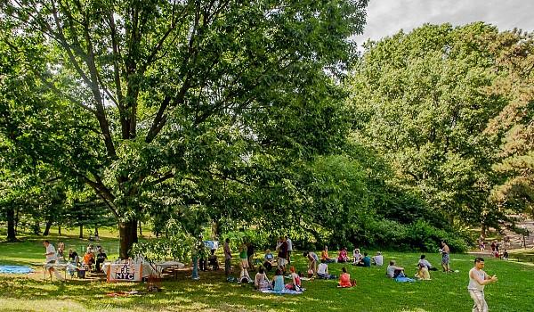 01 2016 picnic mingling01